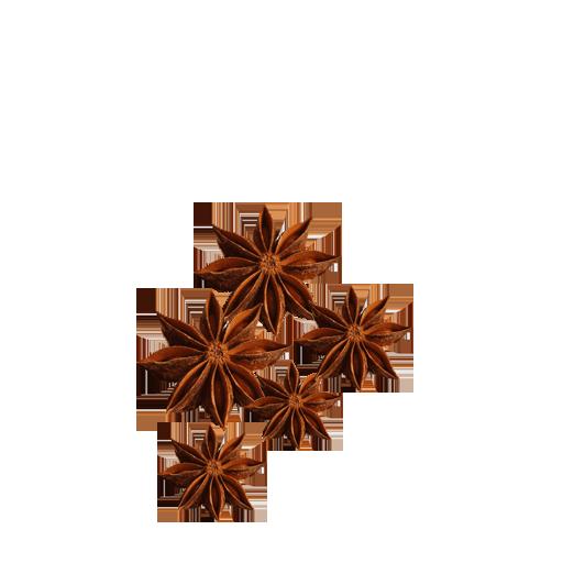 Hoa hồi thơm đặc trưng
