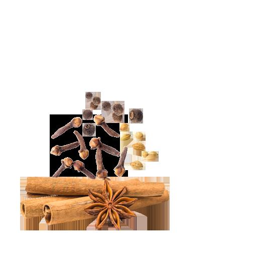 Thành phần của bột ngũ vị hương