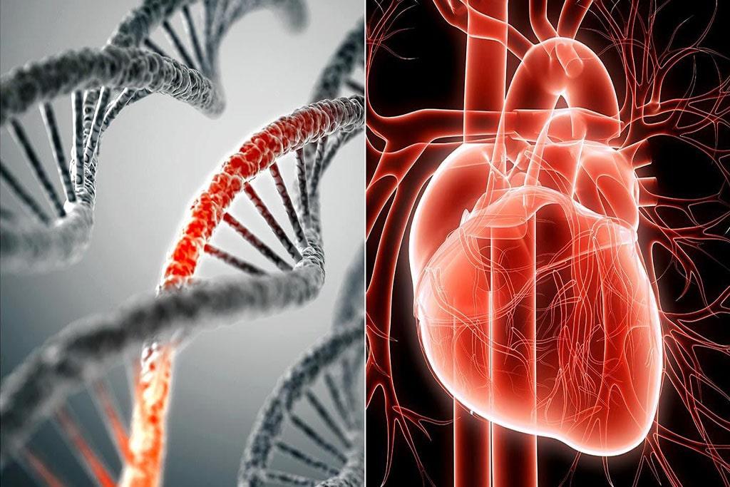 Tăng nguy cơ mắc bệnh về tim